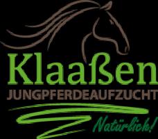 Logo Jungpferdeaufzucht Klaassen